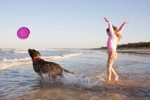 la_gunga_frisbee_beach_web