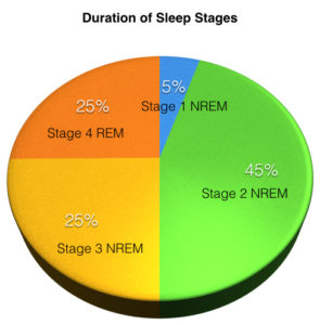 sleep-pie-chart-001