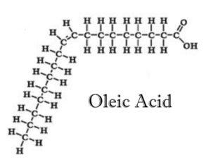 oleic-acid1-001