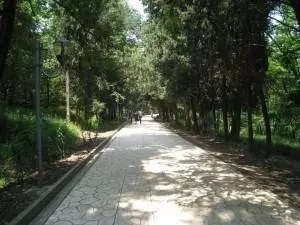 adventures of a gluten free globetrekker Fun things to do in Tirana Albania 9