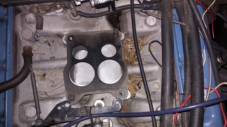 bruce-motor-2