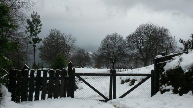 Winter2014InLicanRay