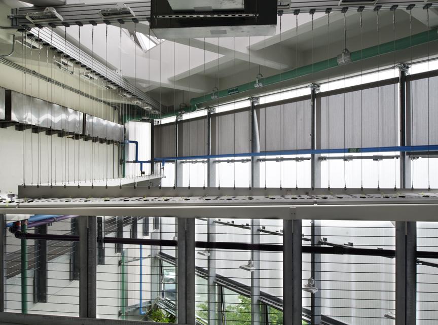 proj-greenhouse.0010