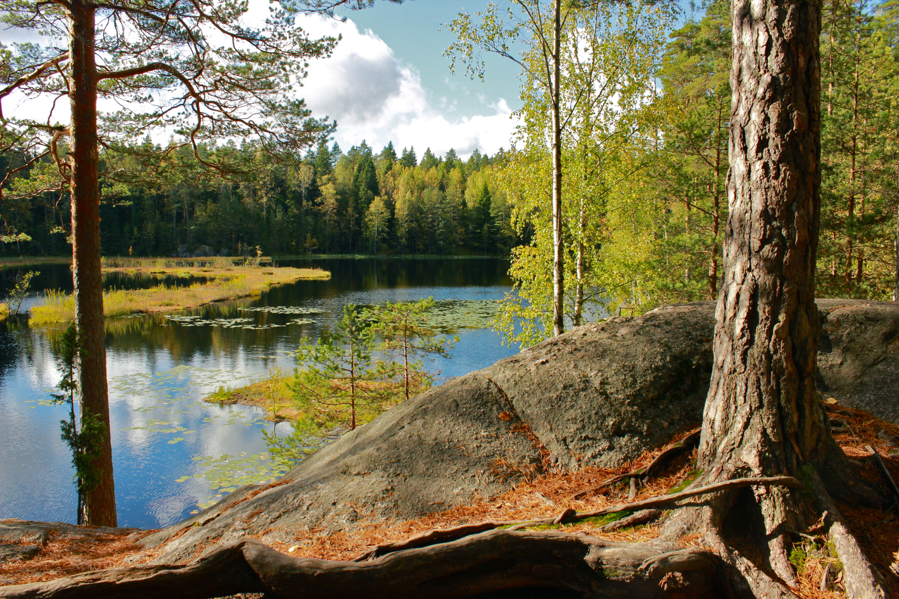 Cosa vedere a Helsinki, Nuuksio National Park
