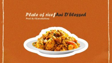 "Photo of Ani D'Blessed Releases ""Plate Of Rice"": Listen!"