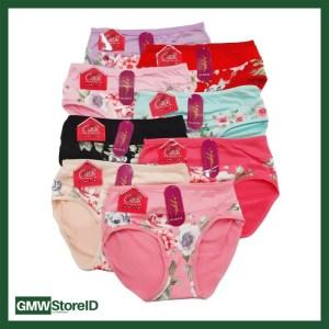 W545 Celana Dalam Wanita Halus CD Perempuan Motif Warna Allsize J13