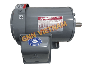 Mitsubishi three phase induction motor