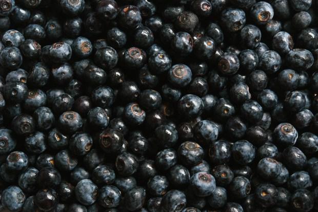 blueberries | gnom-gnom.com