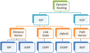dynamic-routing-protocol-in-routing