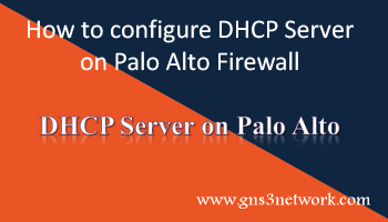 Dora Process In Dhcp Explained In Detail Gns3 Network