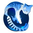 GNUZilla IceCat es una versión de Firefox con una gran lista aplicaciones libres y buenas características de privacidad (Linux)