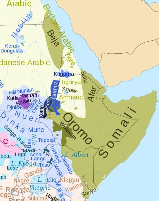 The genetic palimpsest of the Horn of Africa – Gene Expression