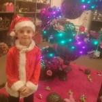 Kerst bij het Tuincentrum – Shoplog