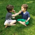 Je kinderen beschermen tegen de zon met Ladival