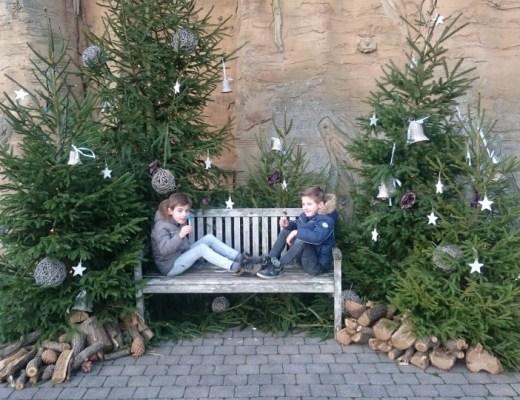 Ervaringen toverland De Magische Winterweken in Toverland