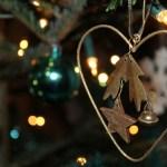 Een kerstboom bezorgd tot in de huiskamer!