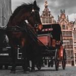 Een weekend naar Antwerpen met kinderen: 5 tips