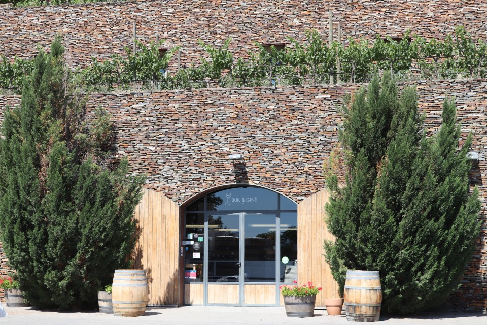 Wijngaard Buil & Giné in Gratallops Costa Daurada ervaringen review tips
