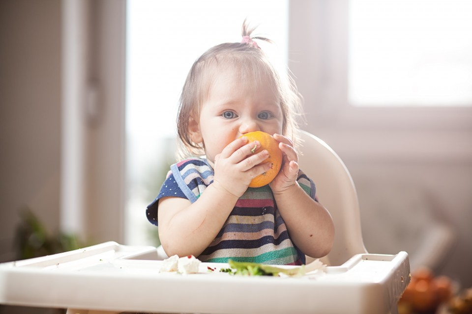 baby-led weaning rapley