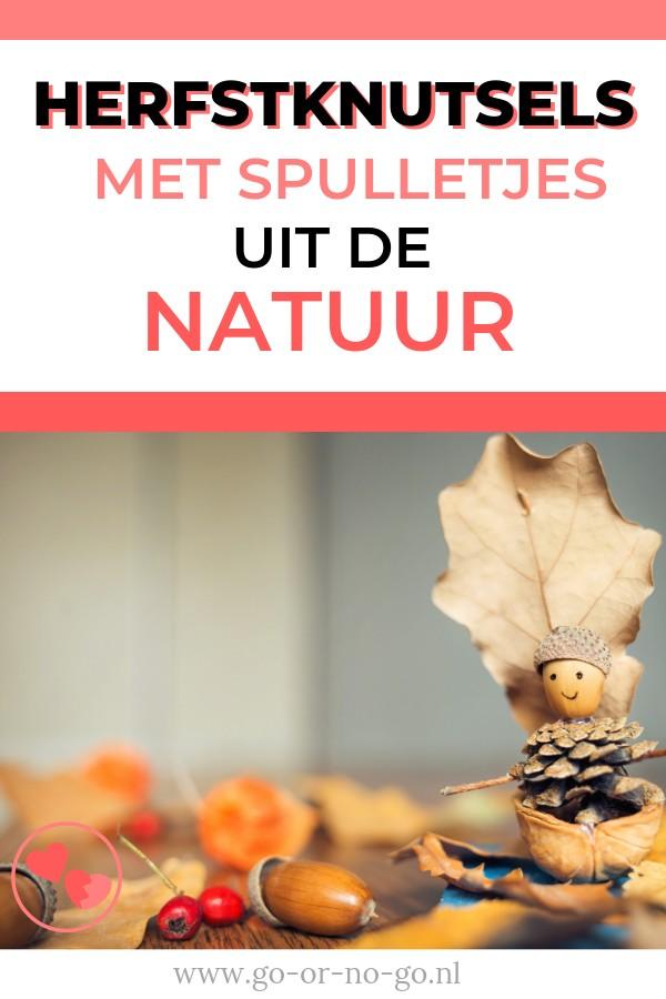 Als je herfstknutsels wilt gaan maken, is dat het leukste met spulletjes uit de natuur.  Hier tips voor deze herfstknutsels.