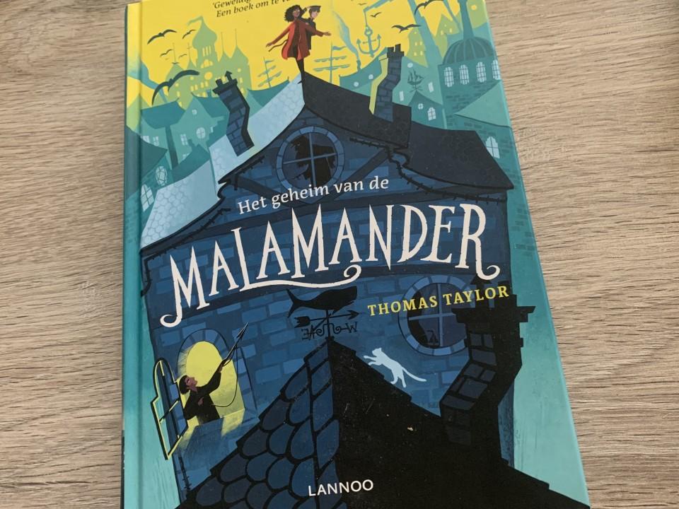 { Boek recensie } | Het Geheim van de Malamander
