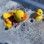 { Review } | VTech Blub Blub Bad Waterpret Eend