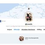 Leer je hond nóg beter kennen door SayHi.dog