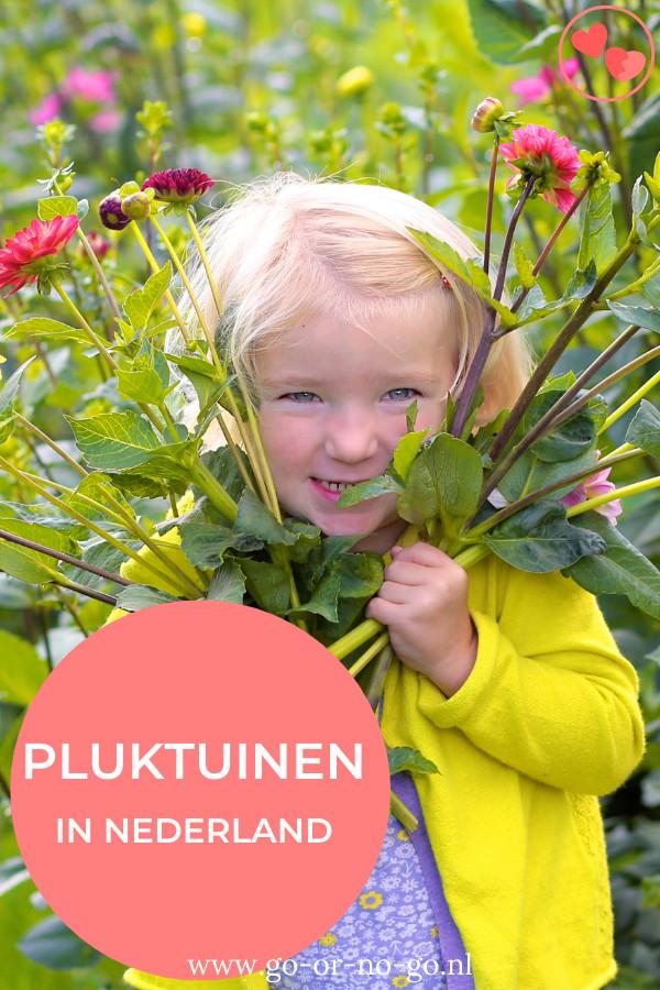 Heb jij kinderen die het liefste elke dag bloemen plukken? Ik heb een aantal leuke pluktuinen per provincie voor je, voor een pluktuin bezoek.