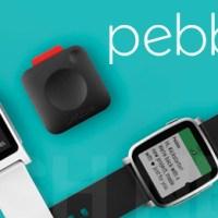 Pebble auf dem Weg zur Schlachtbank