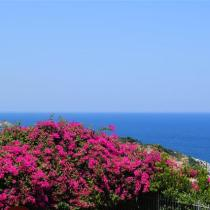 Villas Dioni Sea View