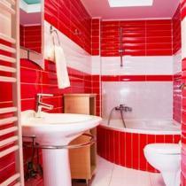 Elektra-Bathroom--First-Floor (Custom)