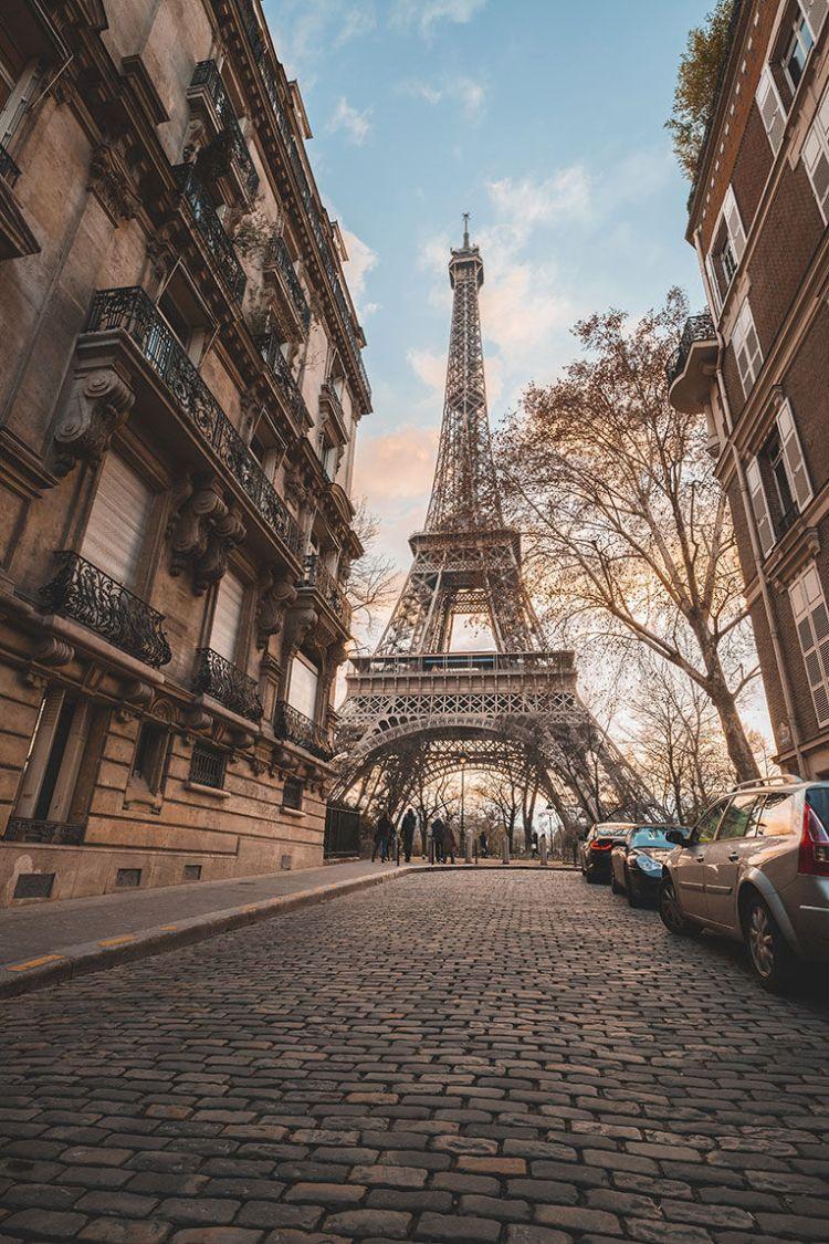 бесплатно учиться во франции