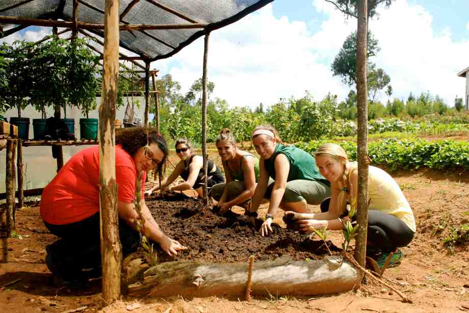 Volunteers planting seeds in Tanzania