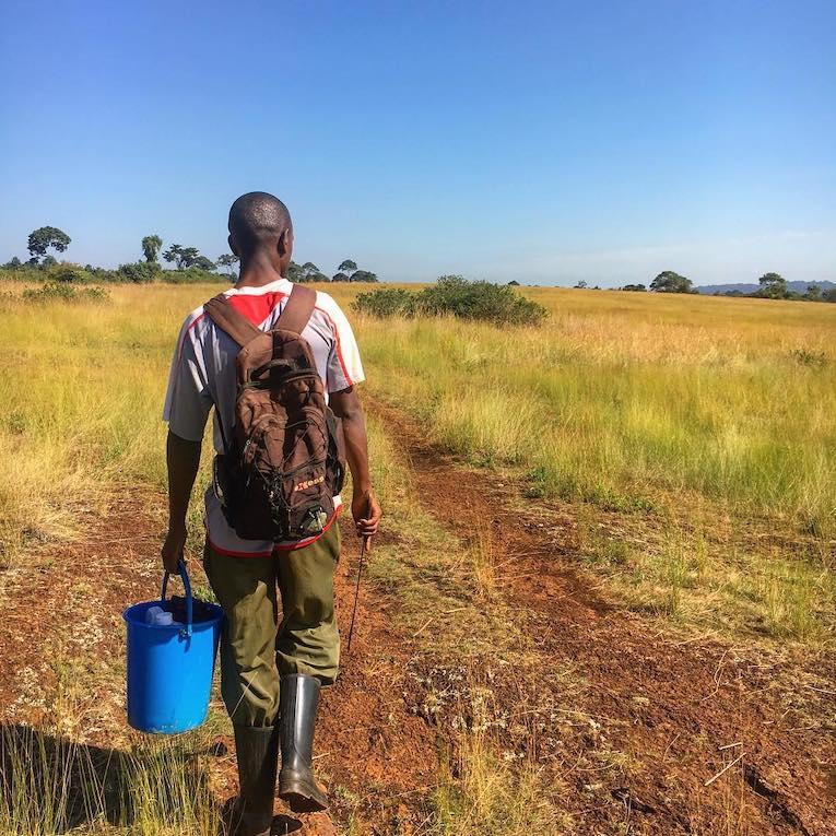 person walking through uganda countryside