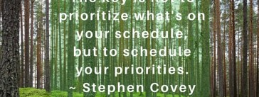 Schedule your Priorities - Can't See the Forest for the Trees Stephen Covey