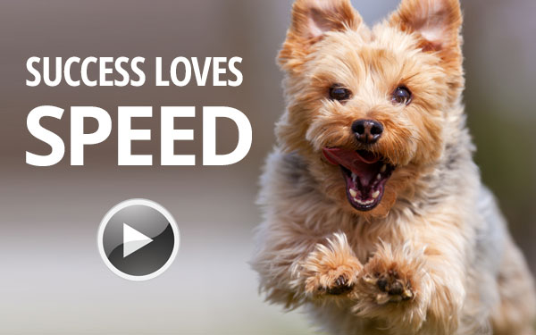 Success Loves Speed Video - 100 Day Challenge