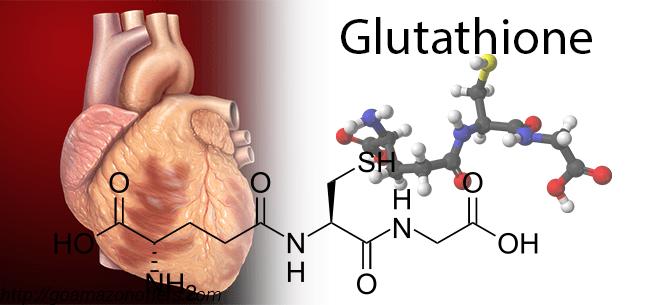 glutathione cardio