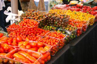 Tomaten in allen möglichen Farben