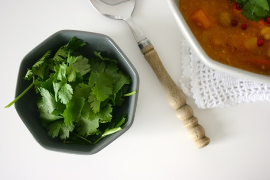 Kürbis-Kichererbsen-Curry3