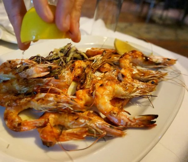 what to eat when travelling in albania fresh shrimp