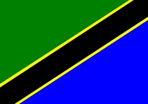 GOAT Volunteers Volunteering in Tanzania