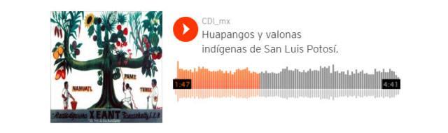 Huapangos y valonas indígenas de San Luis Potosí.