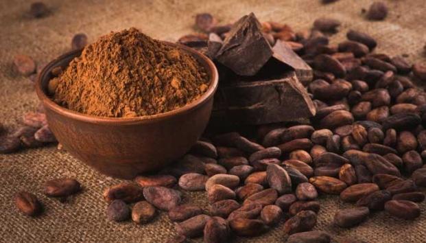 /cms/uploads/image/file/559444/cacao2.jpg