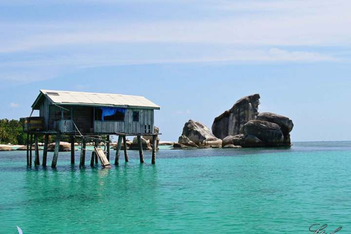 pulau burung Belitung Go Belitung
