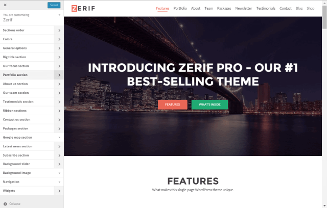 Zerif pro options