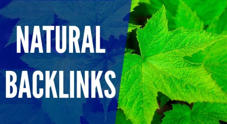 The Unbeatable Guide To Get Natural Backlinks To Your Blog