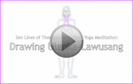 online-therapeutic-parnter-yoga-certification-sen-lines