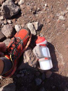 Patagonia Everlong Trail running shoe