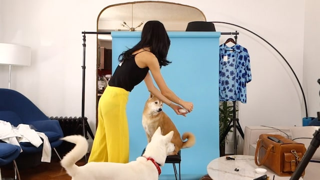 Woman Doing Photoshoot with Dogs