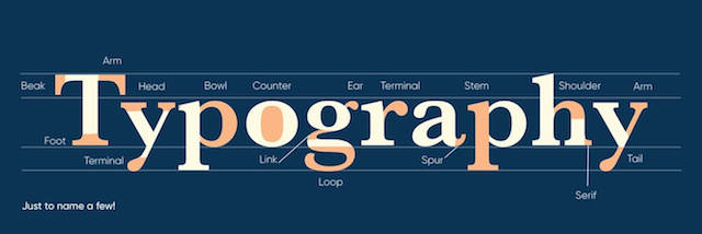 Elements of typography explained